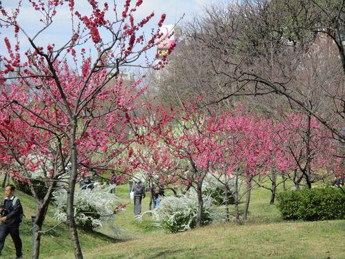 藤田邸庭園