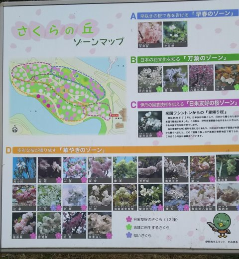 Sakura map